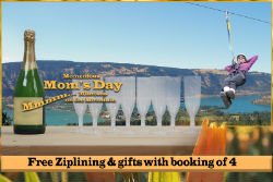 Mom's Zip for FREE!